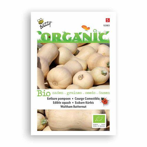 Buzzy® Organic Wintersquash Walt B
