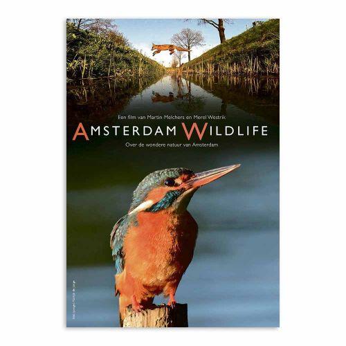 DVD Amsterdam Wildlife