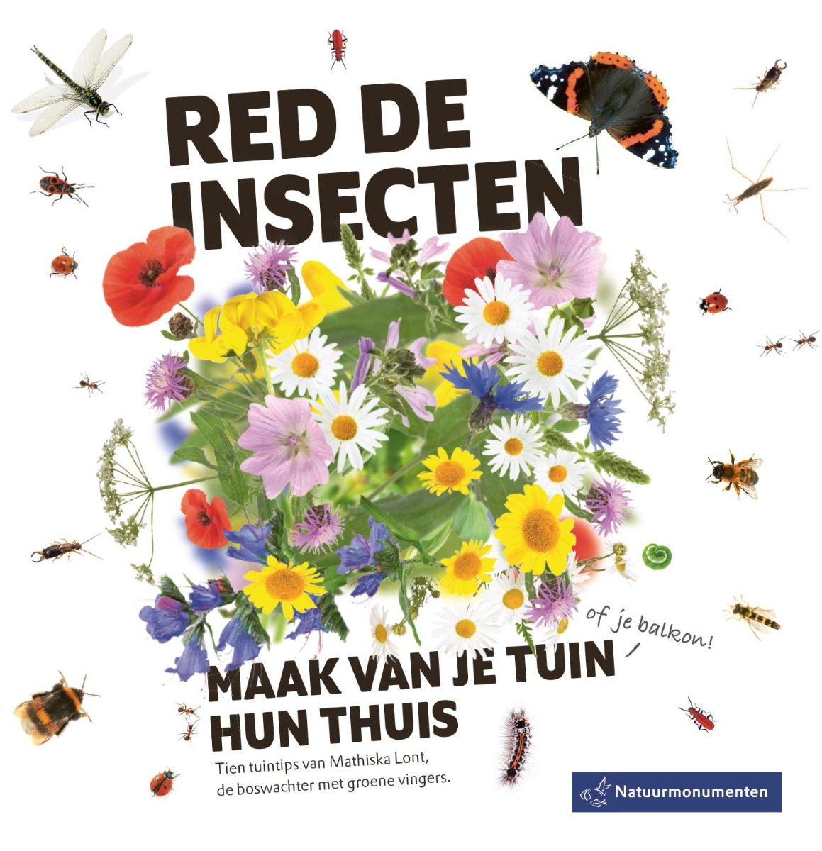 Red de Insecten Natuurmonumenten